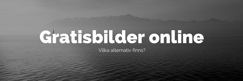 7 Hemsidor Med Gratis Bilder Sörmlands Webbyrå Ab