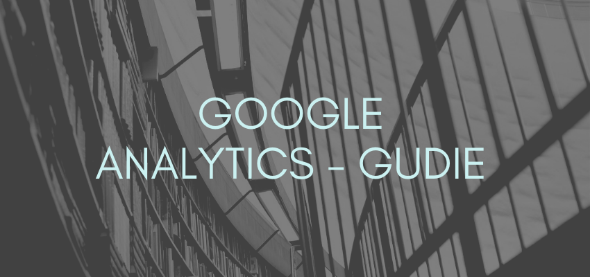 Google Analytics – Gudie